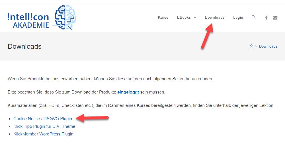 Download des DSGVO Plugins